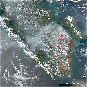 Shifting cultivation - Image: Fires aqua sumatra 14oct 04
