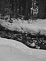 Fish Creek (11897105503).jpg