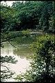 Fishing at Colonial National Historical Park, Virginia (d95e5da1-752f-4c16-9aa9-d06bbcea1014).jpg