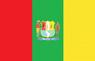 Flag of Eirunepé AM.png
