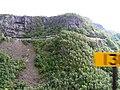 Flambahn, Hangtunnen bei Myrdal - panoramio.jpg
