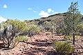 Flinders Ranges SA 5434, Australia - panoramio (11).jpg