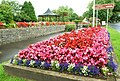Floral display, Scarva 2008 (1) - geograph.org.uk - 906506.jpg