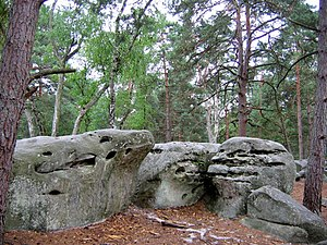 Forest of Fontainebleau - The Fontainebleau forest is famous for its large boulders.