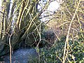 Footbridge near Godfreys Farm - geograph.org.uk - 1165164.jpg
