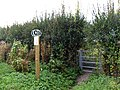 Footpath - geograph.org.uk - 990388.jpg