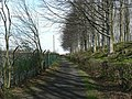 Footpath between Wigton Knowle and Eccup Reservoir - geograph.org.uk - 394861.jpg