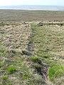 Footpath on Dog Hill, Rishworth - geograph.org.uk - 801887.jpg