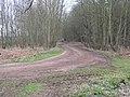 Footpath to Elkesley - geograph.org.uk - 153453.jpg