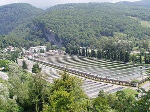 Forel farm Sochi