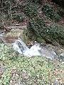 Fosso Tegone - piccola cascata - panoramio.jpg