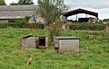 Free-range hens at Castle Farm, Raglan - geograph.org.uk - 1531231.jpg