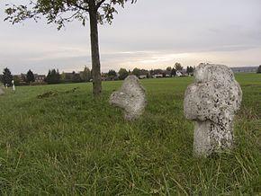 Frellstedt
