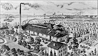 Friedrich Witte Fabrik.jpg