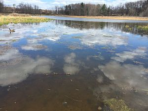 Patton Township, Centre County, Pennsylvania - Ten acre Pond