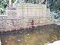 Fuente en el Jardín Botánico - panoramio.jpg
