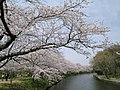 Fukuokaseki-1 - panoramio.jpg