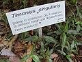 Gardenology.org-IMG 0689 rbgs10dec.jpg