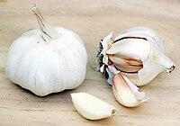 200px-Garlic
