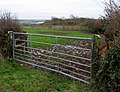 Gate and Field - geograph.org.uk - 310830.jpg