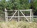 Gate in deer fence - geograph.org.uk - 418587.jpg