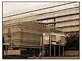 Geneve museum naturel 2011-08-03 18 13 20 PICT0023BW.JPG