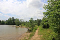 Gfp-ohio-alum-creek-state-park-hiking-trail-by-lake.jpg
