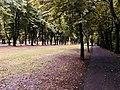 Giardini di viale Umberto I.jpg