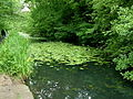 Glamorganshire Canal-by-George-Tod.jpg