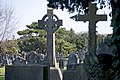 Glasnevin Cemetery - (442797538).jpg