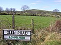 Glen Road - geograph.org.uk - 390147.jpg