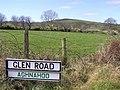 Glen Road - geograph.org.uk - 390147.jpg