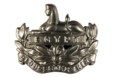 Gloucestershire Regiment Cap Badge.png