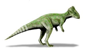 Santonian -  Graciliceratops