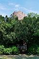 Grafenegg - KöR-ID 610 - Buchsdom Tower von Mark Dion 2007 - II.jpg