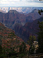 Grand Canyon Widforss trail. 10.jpg