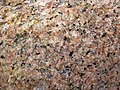 Granite (Giants Range Batholith, Neoarchean, 2.67-2.68 Ga; Rt. 1 roadcut, south of Ely, Minnesota, USA) 7 (20831058173).jpg