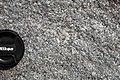 Granodiorite (Barre Pluton, Devonian, ~380 Ma; Rock of Ages Quarry, Graniteville, Vermont, USA) 7.jpg