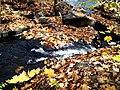 Grant's Creek (Tay River) at Allan's Mill, October, 2009 (5021213226).jpg