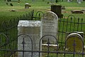 Grave of Mary S. Peake and Family..jpg