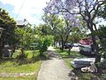 Greenacre NSW 2190, Australia - panoramio.jpg