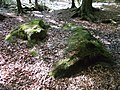 Hünxer Wald Teufelssteine 03.jpg