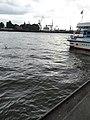 Hamburg 2009 - panoramio (25).jpg