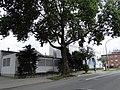 Hamm-Heessen, Hamm, Germany - panoramio (164).jpg