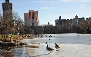 Lake Harlem Meer in Central Park in Winter New...