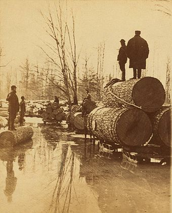 Lumbering pines in the late 1800s Hauling at Thomas Foster's, by Jenney, J A (detail).jpg