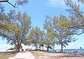 Haulover Inlet - Biscayne Bay, Florida 06.jpg