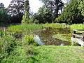 High Elms pond.jpg