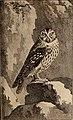 Histoire naturelle des oiseaux (1770) (14562957570).jpg