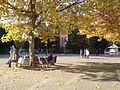 Hochschulstraße TU Darmstadt.jpg